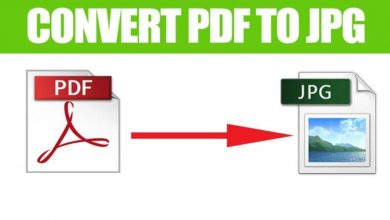 Role of PDF to JPG Converter Online nowadays